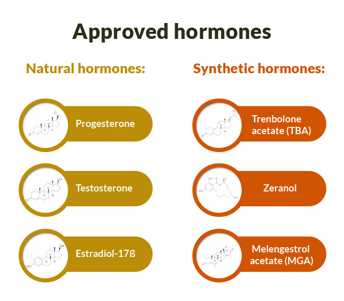 Approved hormones for organic beef production